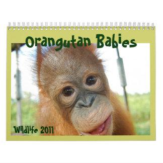 Fauna linda de los monos calendarios de pared