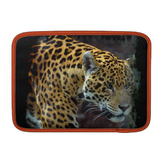 Fauna manchada del gato grande de Jaguar Funda Para Macbook Air