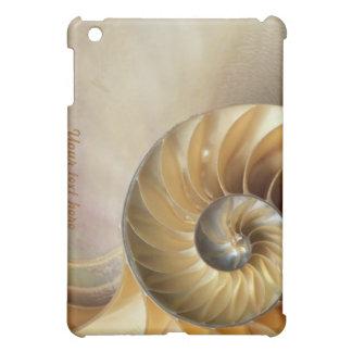 Fauna Pern - macro del Seashell
