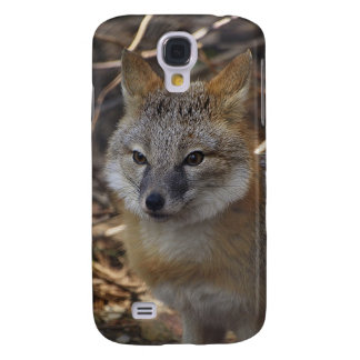 Fauna rápida rara del animal del Fox