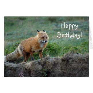Fauna salvaje del animal del Fox Tarjeta De Felicitación