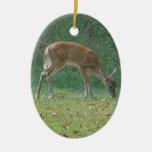 fauno, ciervo del bebé en la punta de flecha del l adorno de navidad