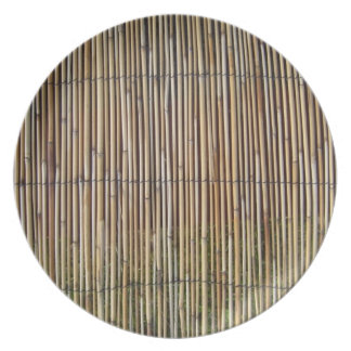 faux bamboo plate