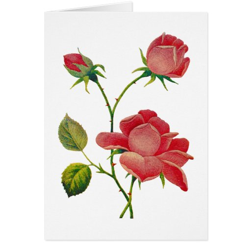 Faux Embroidered Deep Pink Roses Card