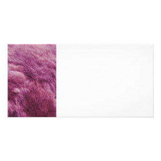 Faux Pink Cat Fur Photo Card Template