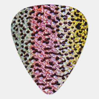 Faux Rainbow Trout Scale Texture Look Pattern Guitar Pick