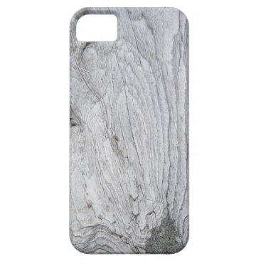 whaleriders6 Faux Sandy Driftwood iPhone SE/5/5s Case