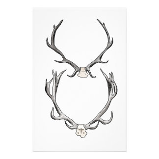 Faux Taxidermy Antler Study VOL 2 Stationery