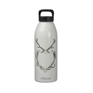 Faux Taxidermy Antler Study VOL 2 Water Bottles
