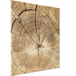 Faux Tree Rings Background Canvas Print