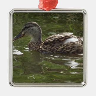Fav poco duckie adorno navideño cuadrado de metal
