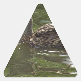 Fav poco duckie pegatina triangular