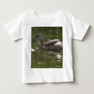 Fav poco duckie playera
