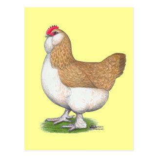 Faverolle Hen Postcard