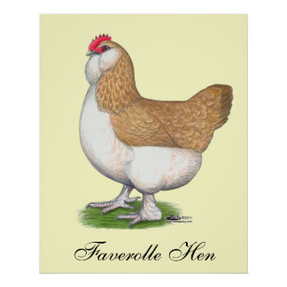 Faverolle Hen Poster