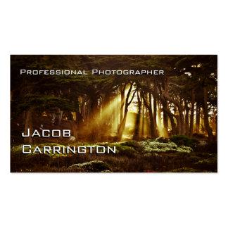 Favorable fotografía (bosque 3) tarjetas de visita