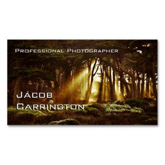 Favorable fotografía (bosque 3) tarjetas de visita magnéticas (paquete de 25)