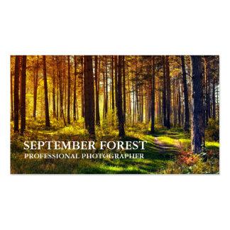 Favorable fotografía (bosque) tarjetas de visita