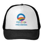 Favorable-Orgullo y Favorable-Obama Gorra