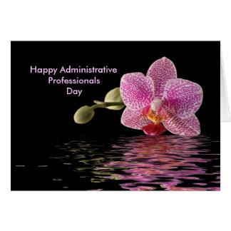 Favorable reflexión de la orquídea del rosa del tarjeta de felicitación