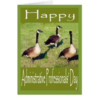favorables gansos administrativos del día tarjeta de felicitación