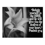 FAVORITE  BIBLE SCRIPTURE PSALM 37:4 POST CARDS