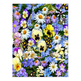 Favourite Flowers Postcard