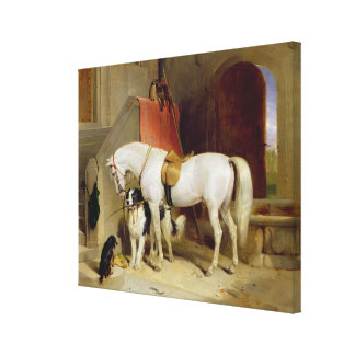 Favourites de príncipe George (aceite en lona) Lona Envuelta Para Galerías