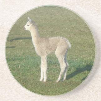 Fawn alpaca drink coasters