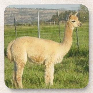 Fawn Alpaca Cria Coasters