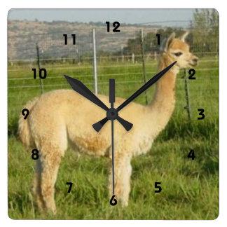 Fawn Alpaca Cria Square Wall Clock
