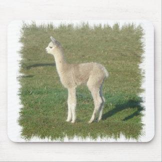 Fawn alpaca mouse pads
