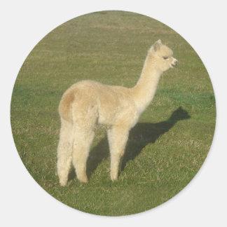 Fawn alpaca round stickers