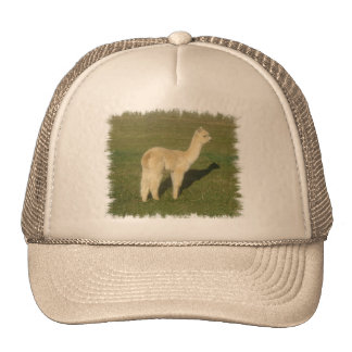 Fawn alpaca trucker hat