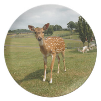 Fawn Baby Deer Plate