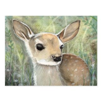 Fawn Baby Deer Wildlife Watercolor Painting Postcard