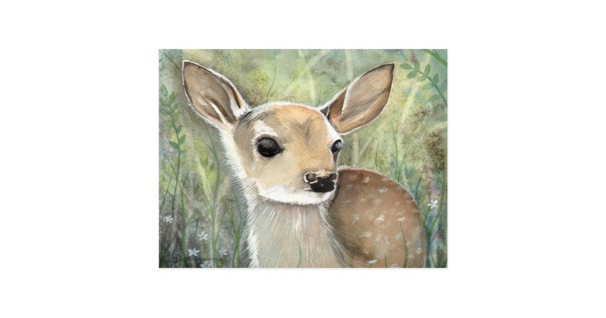 Fawn Baby Deer Wildlife Watercolor Painting Postcard Zazzle Com
