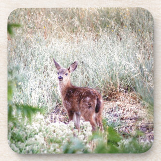 Fawn Beverage Coaster