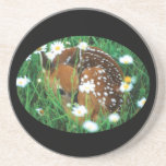 fawn beverage coasters