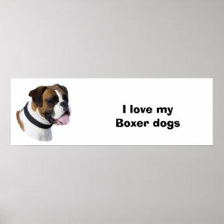 Fawn Boxer dog photo portrait Print