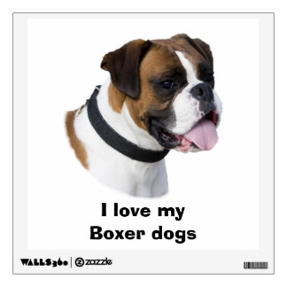 Fawn Boxer dog photo portrait Wall Skins