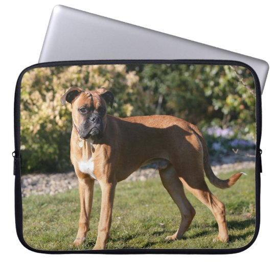 Fawn Boxer Dog Standing Computer Sleeve