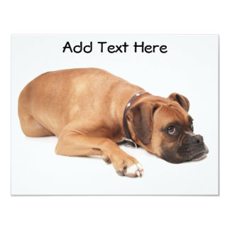 Fawn Boxer Resting Card