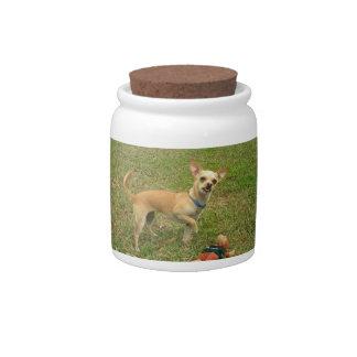Fawn Chihuahua Dog Treat Candy Jar