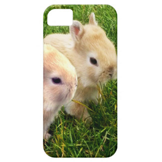 Fawn Dwarf Bunny Rabbits, iPhone SE/5/5s Case