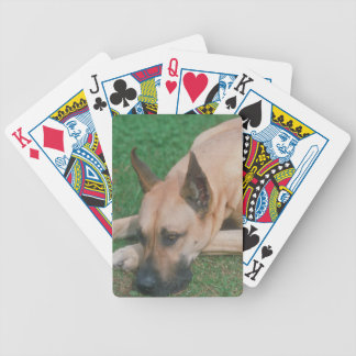 Fawn Great Dane Dog Playing Cards