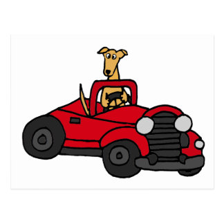 Fawn Greyhound Dog Driving Red Convertible Postcard