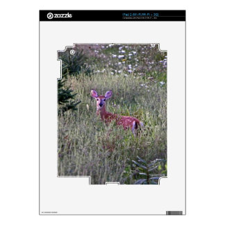 Fawn in Grass Tablet Skin iPad 2 Decals