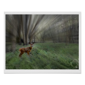 Fawn in Morning Sunlight Poster