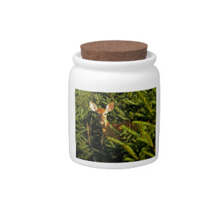 Fawn in Pine Trees Candy Jar